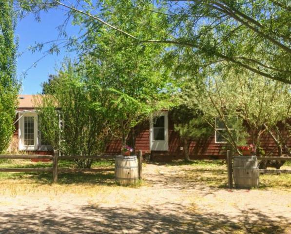 10105 Coleman Ln, Stagecoach, NV 89403 (MLS #190005733) :: NVGemme Real Estate