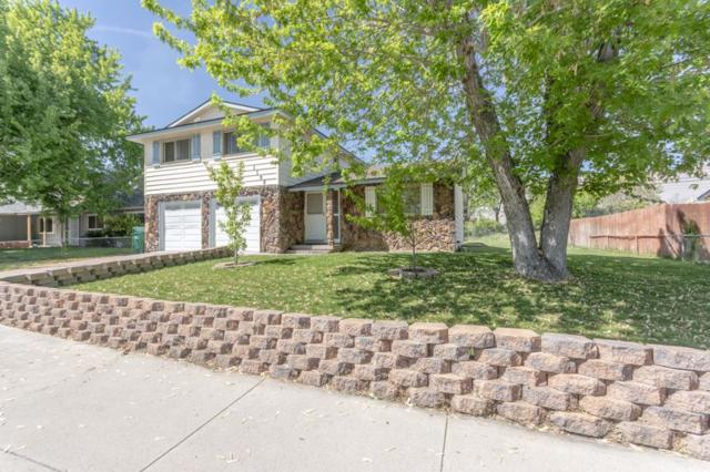1105 Autumn Hills Dr., Reno, NV 89511 (MLS #190006835) :: The Mike Wood Team