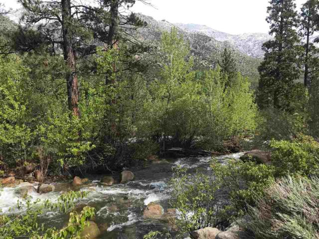 30 Acres Carson River, Woodfords, Ca, CA 96120 (MLS #190006956) :: Chase International Real Estate