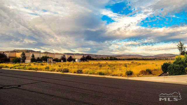 2563 Precision, Minden, NV 89423 (MLS #190007395) :: Theresa Nelson Real Estate