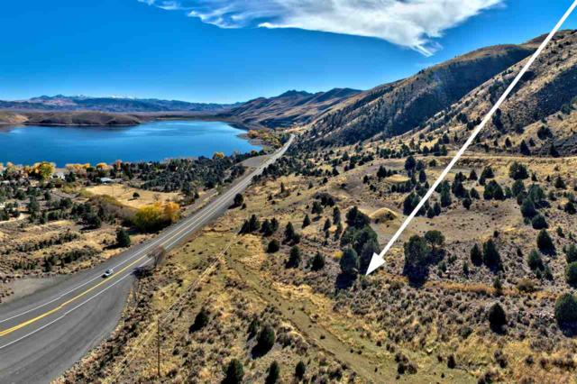 2000 S Hwy 395, Topaz, NV 89410 (MLS #190007642) :: NVGemme Real Estate