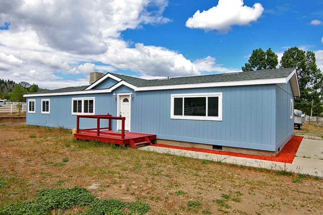 866 Washoe Drive, Washoe Valley, NV 89704 (MLS #190007734) :: Marshall Realty