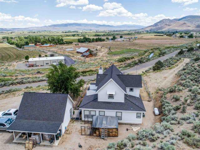 99 Upper Colony Rd., Wellington, NV 89444 (MLS #190008269) :: The Mike Wood Team