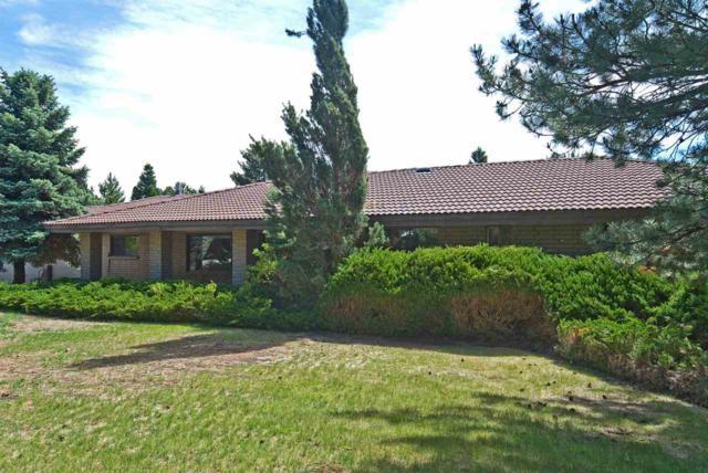 1321 Longview Way, Carson City, NV 89701 (MLS #190008517) :: Chase International Real Estate