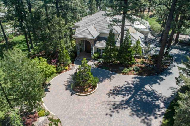 2 Franktown Court, Washoe Valley, NV 89704 (MLS #190008641) :: Ferrari-Lund Real Estate