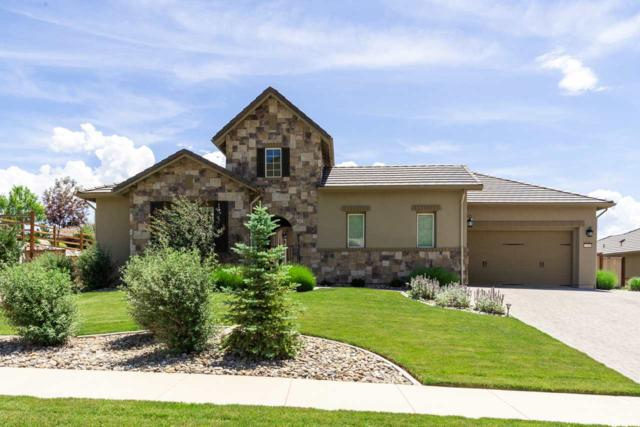 2796 Voight Canyon, Genoa, NV 89411 (MLS #190008973) :: Chase International Real Estate