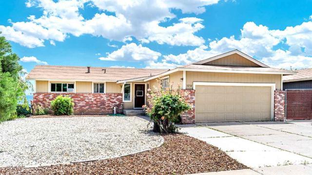3210 Coronado Way, Reno, NV 89523 (MLS #190008996) :: Ferrari-Lund Real Estate