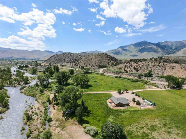 109360 Hwy 395, Coleville, Ca, CA 96107 (MLS #190009313) :: Chase International Real Estate