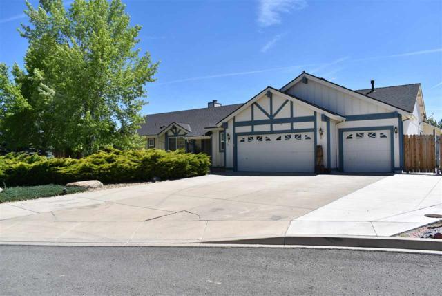 30 Michael Place, Sparks, NV 89441 (MLS #190009441) :: NVGemme Real Estate
