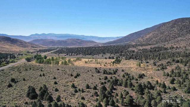 tbd Hwy 395 Westside, Gardnerville, NV 89410 (MLS #190010668) :: Chase International Real Estate