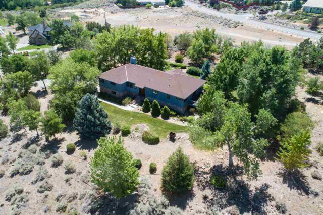 11205 Vincent Lane, Reno, NV 89511 (MLS #190012217) :: Joshua Fink Group