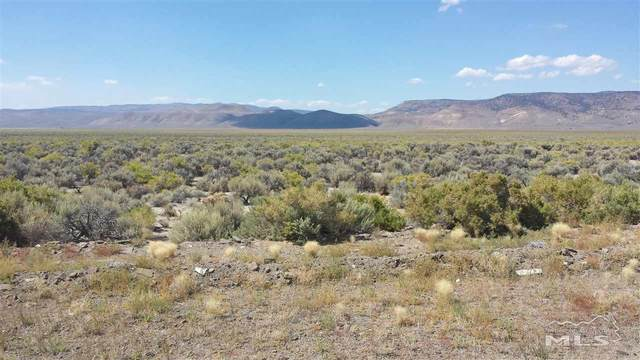 119 Hwy 447, Gerlach, NV 89412 (MLS #190013663) :: Ferrari-Lund Real Estate