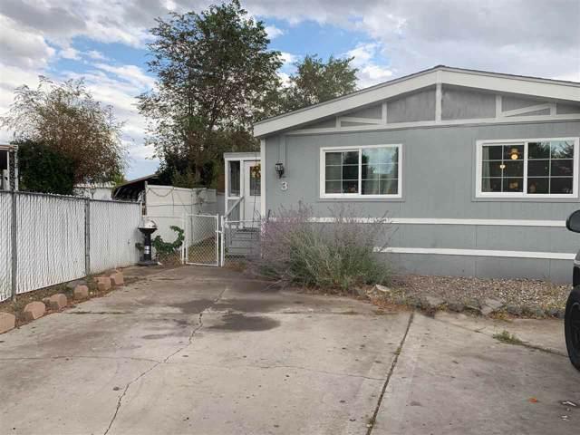 3 Ediza Circle, Carson City, NV 89706 (MLS #190013968) :: L. Clarke Group   RE/MAX Professionals