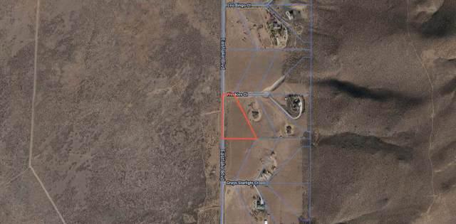 4800 Freckles Ct., Washoe Valley, NV 89704 (MLS #190014160) :: NVGemme Real Estate
