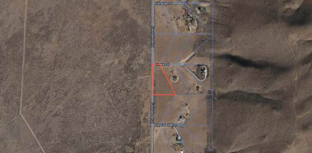 4800 Freckles Ct., Washoe Valley, NV 89704 (MLS #190014160) :: Ferrari-Lund Real Estate