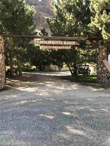 1051 E Side Ave, Jarbidge, NV 89826 (MLS #190014186) :: NVGemme Real Estate