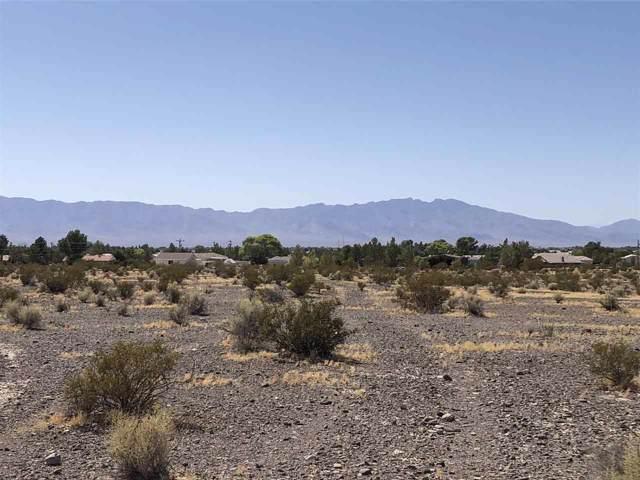 6460 S Evans Rd, Pahrump, NV 89061 (MLS #190014229) :: Northern Nevada Real Estate Group