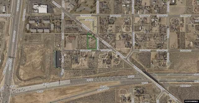 4810 Snyder Avenue, Carson City, NV 89701 (MLS #190015237) :: Joshua Fink Group