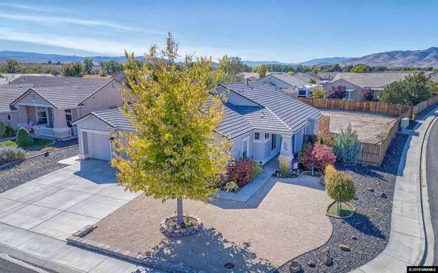 1601 Dandelion Ct, Dayton, NV 89403 (MLS #190015501) :: The Hertz Team