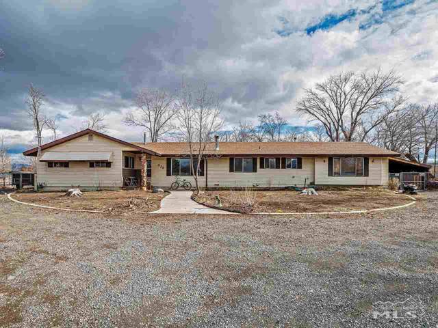 829 Lyell Way, Gardnerville, NV 89460 (MLS #190018382) :: Ferrari-Lund Real Estate