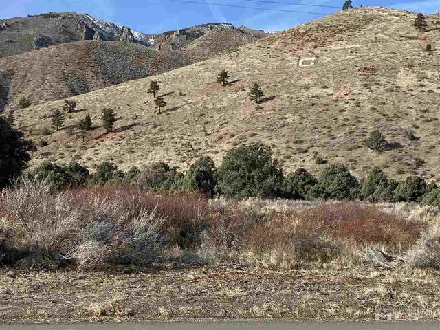 APN 002020046 Highway 395, Coleville, Ca, CA 96107 (MLS #200000420) :: Theresa Nelson Real Estate