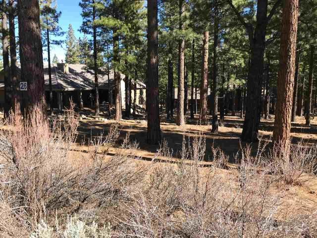 30 Winterberry Ct, Reno, NV 89451 (MLS #200001527) :: Vaulet Group Real Estate
