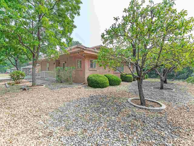 309 W Park, Carson City, NV 89703 (MLS #200012297) :: Ferrari-Lund Real Estate