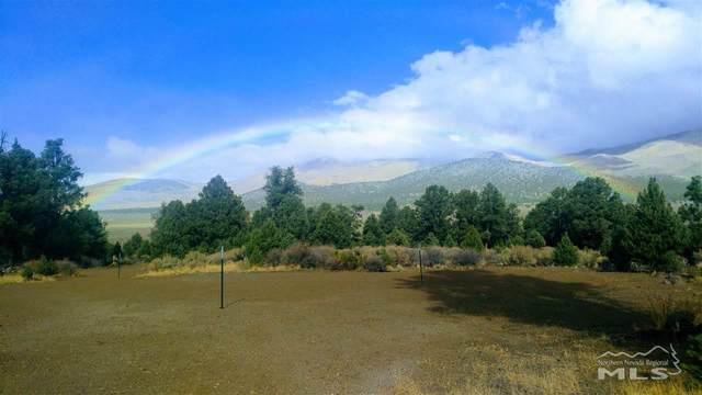 778 Big Valley, Gardnerville, NV 89410 (MLS #200015191) :: NVGemme Real Estate