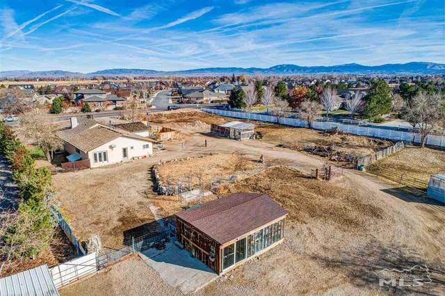 1113 Centerville Lane, Gardnerville, NV 89460 (MLS #200016292) :: NVGemme Real Estate