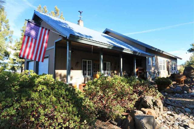 1900 Airport Road, Markleeville, Ca, CA 96120 (MLS #210000081) :: Colley Goode Group- eXp Realty
