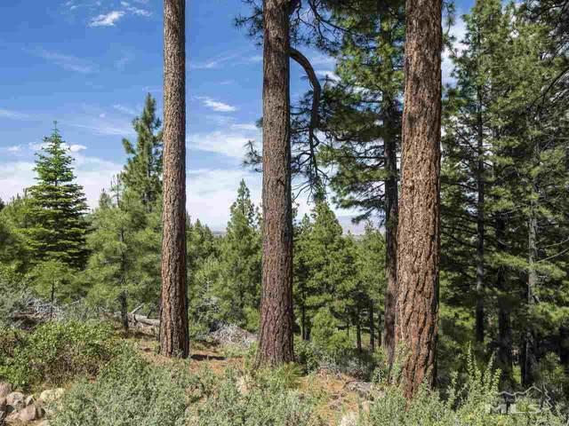 0 Abies Road, Reno, NV 89511 (MLS #210001463) :: Chase International Real Estate