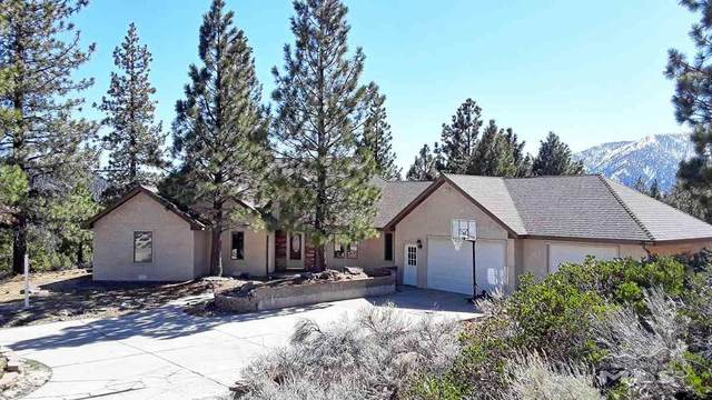 5364 Sierra Highlands Dr, Carson City, NV 89705 (MLS #210003553) :: Morales Hall Group