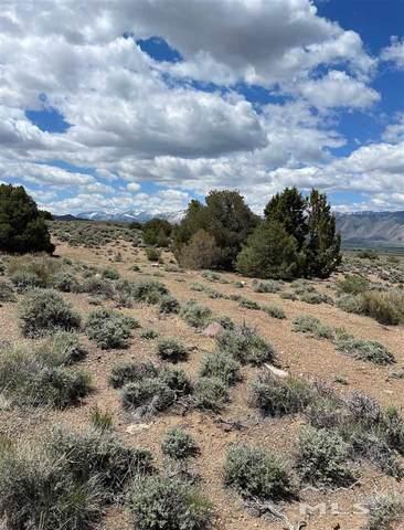 Parcel 9 Lone Eagle, Topaz, NV 89410 (MLS #210004258) :: NVGemme Real Estate