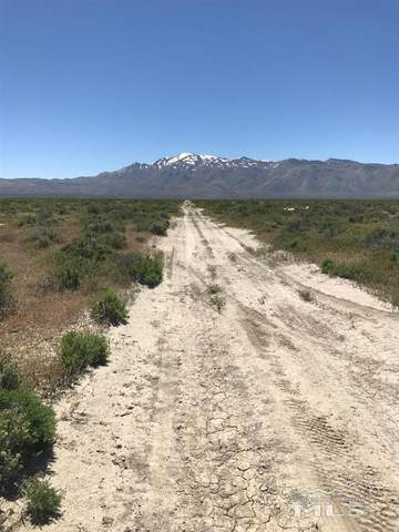 07443116 Flanigan Washoe County, Other, NV 89510 (MLS #210005255) :: Theresa Nelson Real Estate