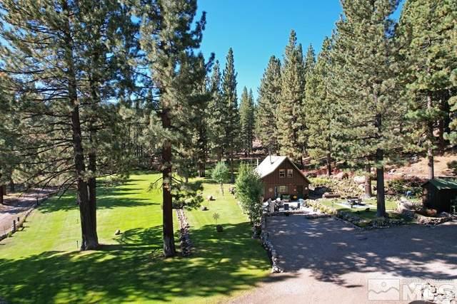 100 Dixon Mine Road, Markleeville, Ca, CA 96120 (MLS #210013428) :: Colley Goode Group- CG Realty