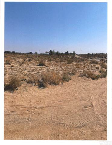 1595 E Ermine St, Silver Springs, NV 89429 (MLS #210014280) :: Theresa Nelson Real Estate