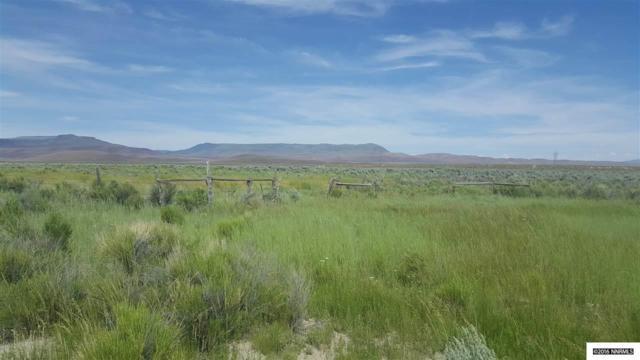 001 Kelly Creek, Golconda, NV 89414 (MLS #160003997) :: NVGemme Real Estate