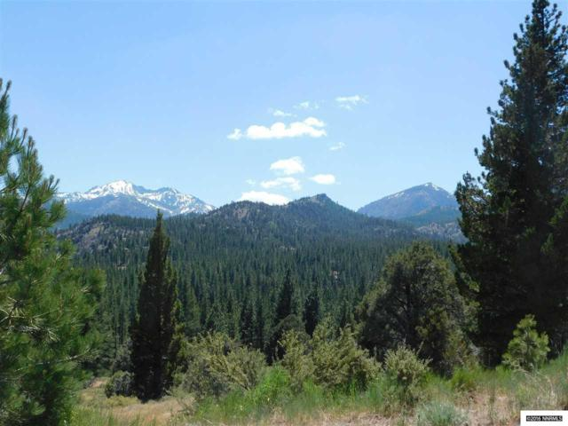 Lot 16 Raymond View, Markleeville, Ca, CA 96120 (MLS #160015494) :: RE/MAX Realty Affiliates