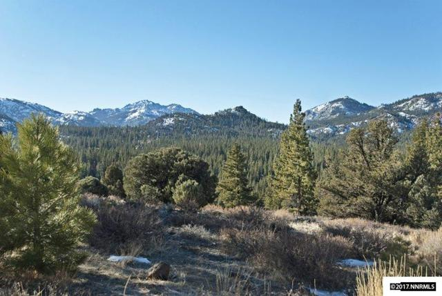 Lot 17 Raymond View Road, Markleeville, Ca, CA 96120 (MLS #170000717) :: RE/MAX Realty Affiliates