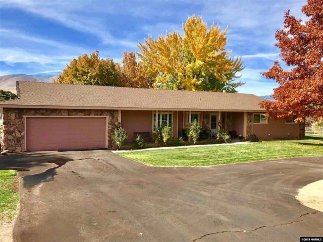 4 Raglan Circle, Carson City, NV 89701 (MLS #180013184) :: Vaulet Group Real Estate