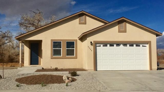 1360 Onda Verde, Fallon, NV 89406 (MLS #190001270) :: Chase International Real Estate