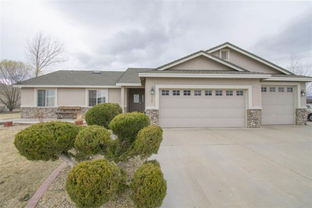 202 Travis Ct., Dayton, NV 89403 (MLS #190003483) :: NVGemme Real Estate