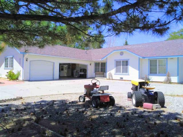 1070 E Roland St, Carson City, NV 89701 (MLS #190008556) :: Marshall Realty