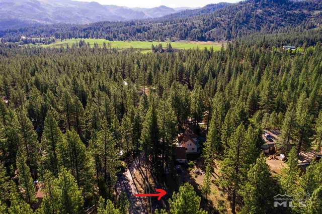 45 Pinon Road, Markleeville, Ca, CA 96120 (MLS #200014563) :: The Mike Wood Team