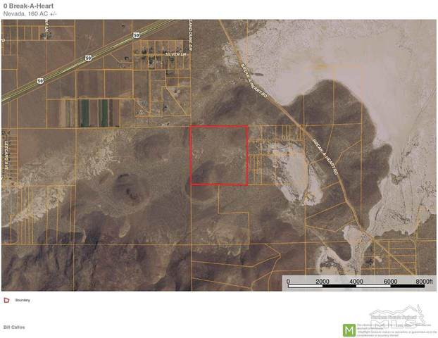 0 Break-A-Heart, Stagecoach, NV 89429 (MLS #210007572) :: Theresa Nelson Real Estate
