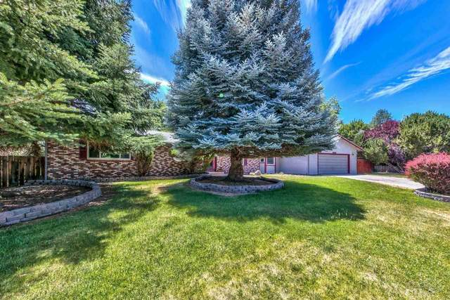 1889 Newman Place, Carson City, NV 89703 (MLS #210009943) :: Chase International Real Estate