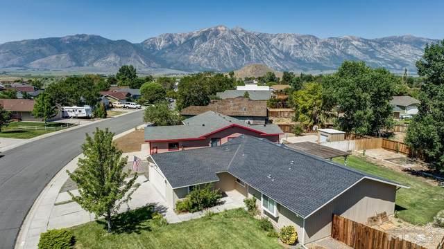 626 Adaline Way, Gardnerville, NV 89460 (MLS #210010344) :: Chase International Real Estate