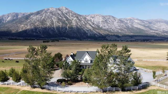 550 State Route 88, Gardnerville, NV 89460 (MLS #210014184) :: Theresa Nelson Real Estate
