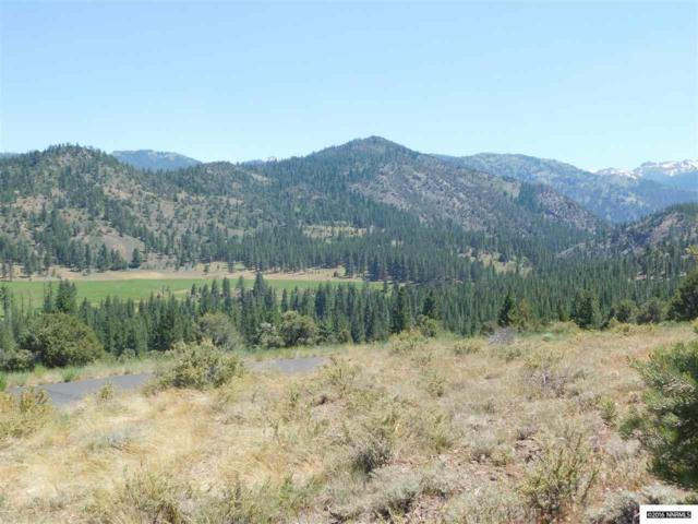 Lot 12 Silver Peak, Markleeville, Ca, CA 96120 (MLS #130003144) :: Fink Morales Hall Group