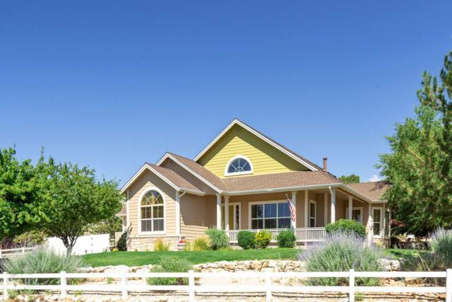 2653 Skyline, Minden, NV 89423 (MLS #190010232) :: NVGemme Real Estate